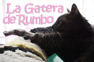 Gatera Rumbo Gato Adios Ternura Amor