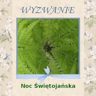 http://szuflada-szuflada.blogspot.com/2016/06/wyzwanie-6-noc-swietojanska.html