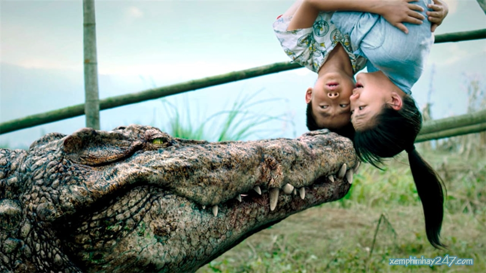 http://xemphimhay247.com - Xem phim hay 247 - Cá Sấu Triệu Đô (2012) - Million Dollar Crocodile (2012)