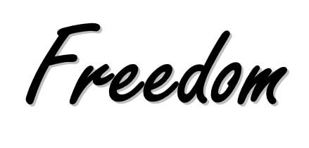 Goodle-Adsense-Alternative-freedom