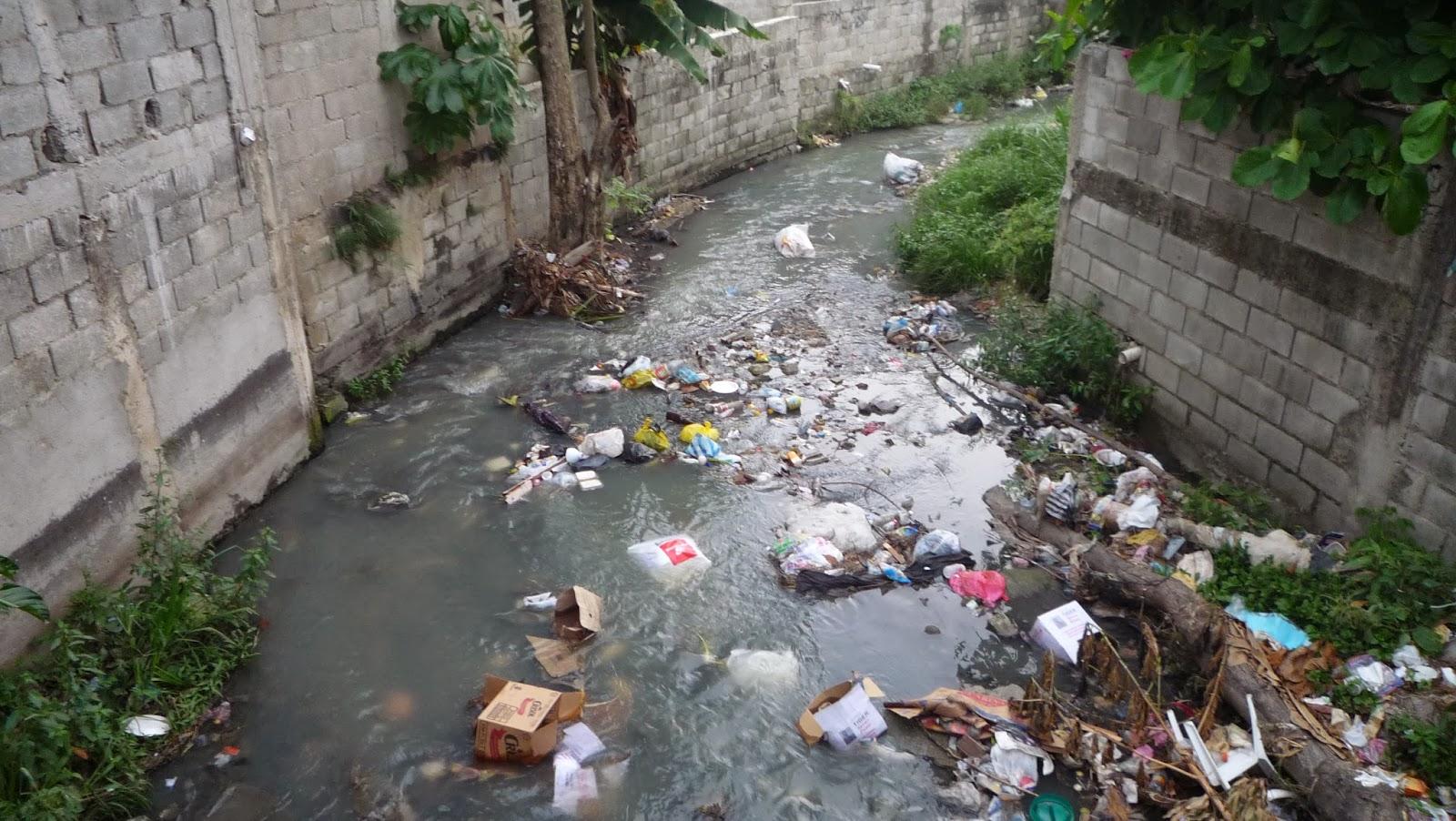 Escuela De Agronomía, IPL: Contaminación Ambiental