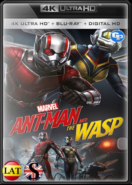 Ant-Man y la Avispa (2018) 4K UHD LATINO/INGLES