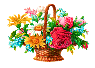 wildflower basket illustration