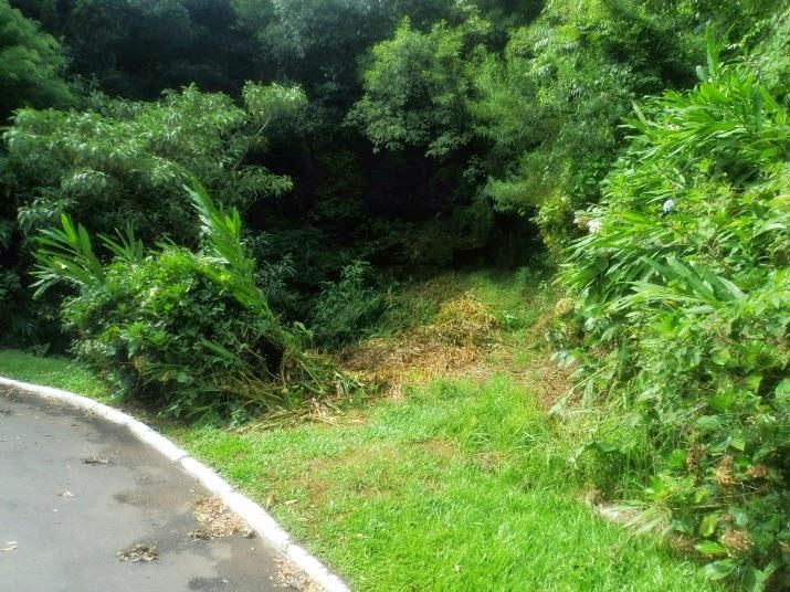 Início da Trilha para a Cascata Véu de Noiva, em Gramado
