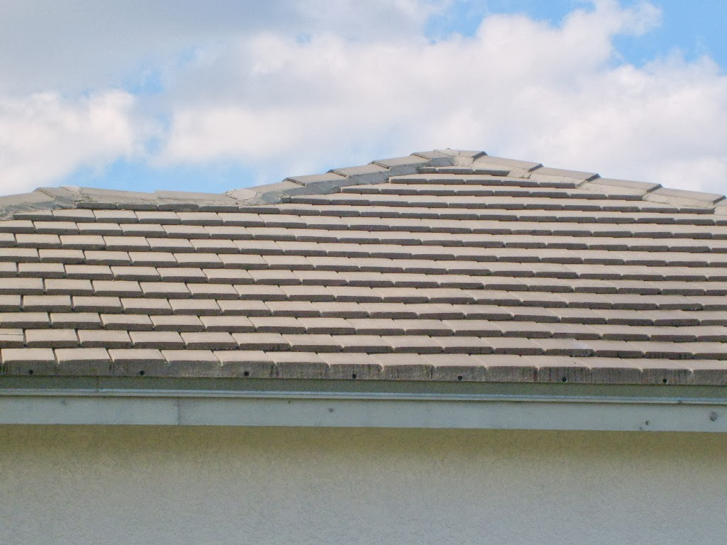 Charming Roof Cleaning Can Prevent Staining And Help The Roof Retain Its Original  Color And Attractiveness Many Types Of Trees And Bushes That Are Commonly  Planted ...