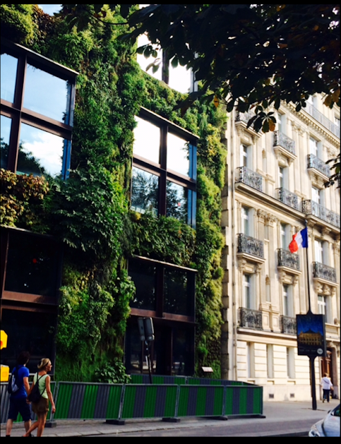 France's New Law Forces Green Roofs on Commercial Buildings