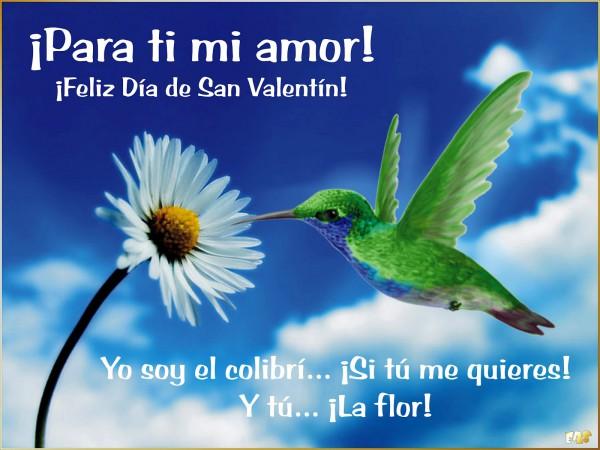 Frases De Amor Cortas Feliz San Valentin 2016 Frases De: Mensajes De Amor: Cartas Cortas De Amor Para San Valentin
