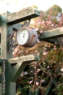 garden clock and flowers