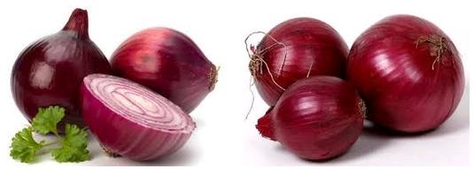 Klasifikasi dan Manfaat Bawang Merah