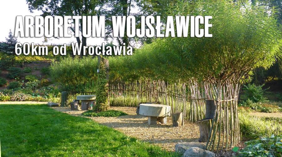 Wrodzice Wrocławski Blog O Dzieciach Mieście Wycieczkach