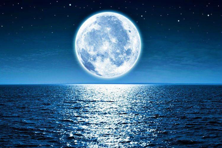Ay, Dünya'dan uzaklaştığında gelgit etkisi kaybolacağından bazı canlı türlerinin nesilleri de tükenecektir.