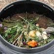 Beginners Guide to Home Composting | Gardening Tips and Tricks