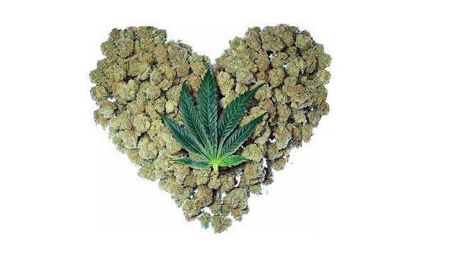 Cannabis May Soon be Used in Stroke and Cardiac Emergencies