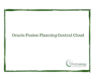 Oracle Fusion Planning Central Cloud