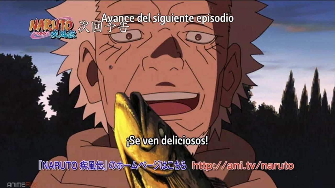 Naruto Shippuden cap 480 sub español