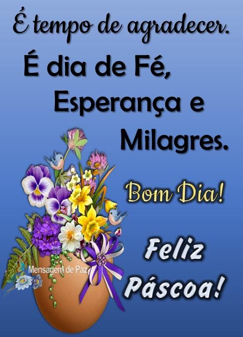 É tempo de agradecer.  É dia de Fé, Esperança e  Milagres.  Feliz Páscoa!  Bom Dia!