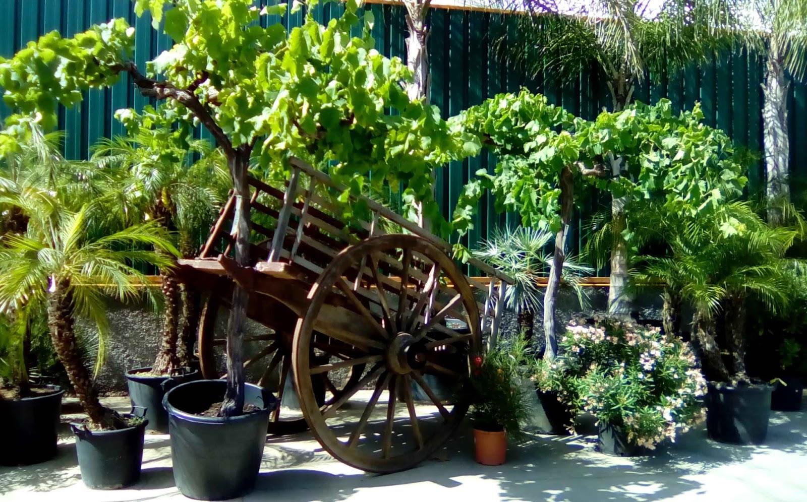 El sello verde de visita por los viveros el lago for Viveros arboles frutales