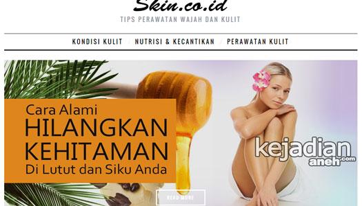 blog pribadi artis indonesia