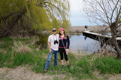 Marsh Boardwalk - Point Pelee