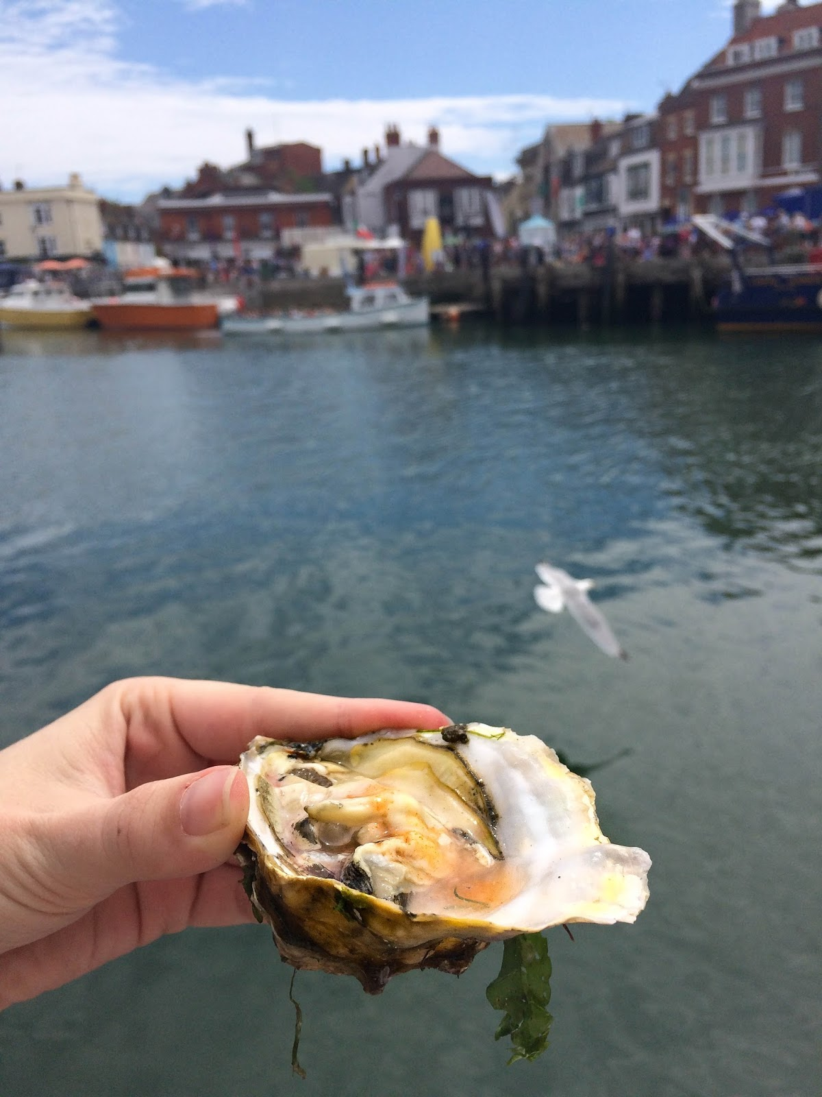 Pommery Dorset Seafood Festival in Weymouth, oysters, street food, food bloggers, lifestyle bloggers