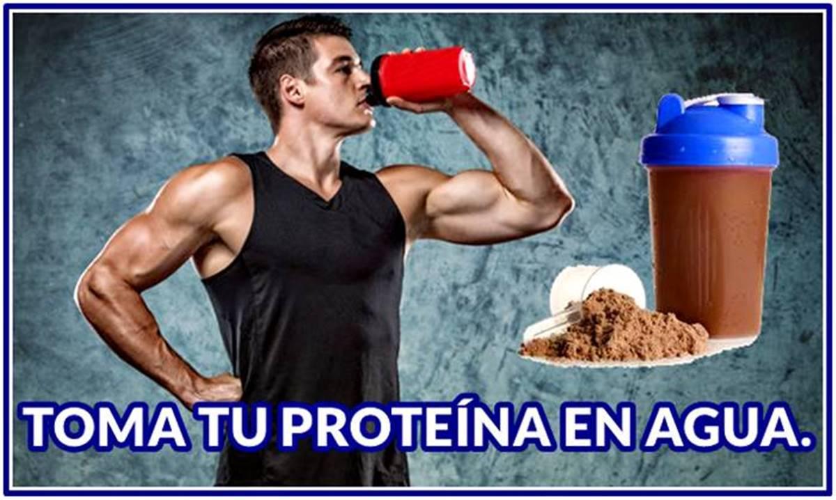 ¿Es mejor licuar tu proteína en polvo en agua o en leche?