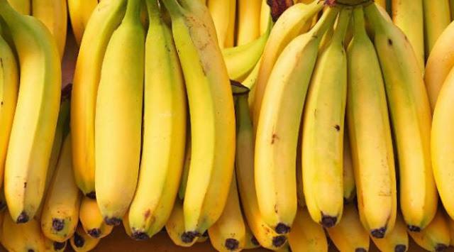 kelebihan pisang cavendish