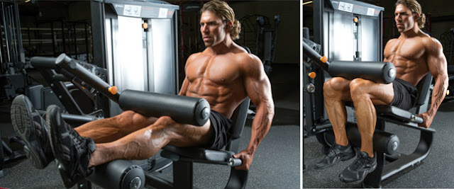 Six Exercises For A Killer Leg Workout