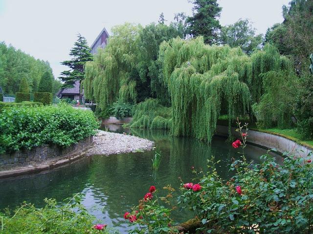 História do Jardim Botânico de Dublin