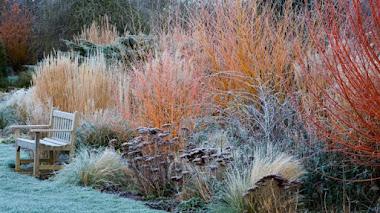 Jardines en invierno según Clive Nichols