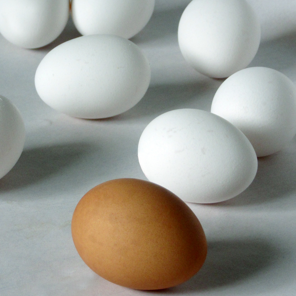 Stillife with one brown and seven white eggs.