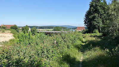 Pfad zur Brücke bei Hagneck