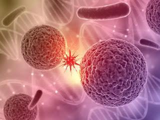 台灣癌症原因,癌症預防,為何會得癌症,腫瘤形成原因,癌症預防方法,癌症主因為何