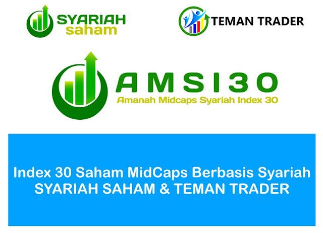 AMSI30