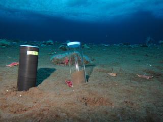Jenis Sedimen Dasar Laut