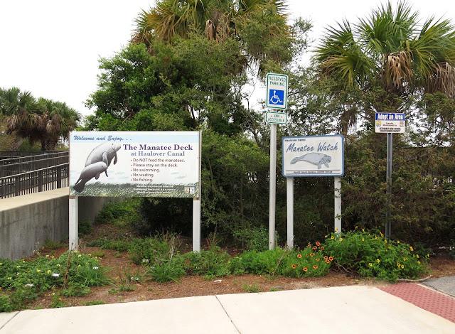 Manatee Deck - Merritt Island, Florida