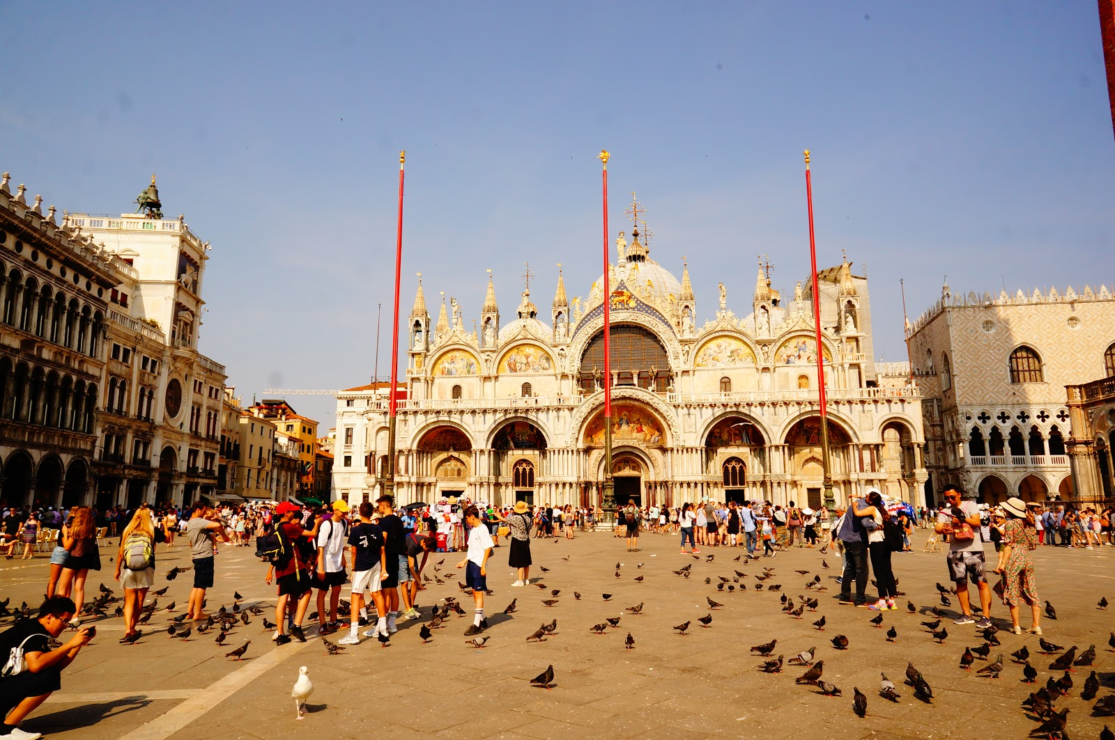 Венеция площадь сан марко картинка