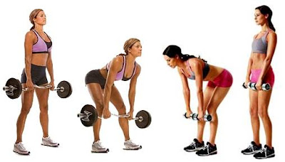 Mujeres rutina de entrenamiento corta duración masa muscular