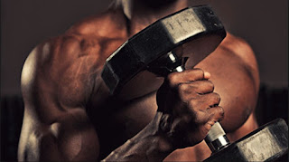 whey protein, kreatin, suplementi prodaja ogistra. suplementi povoljno.trening. misicna masa,prodaja suplementacije., velike ruke.kako povecati telesnu tezinu