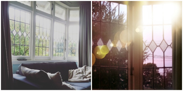 Snuggling up on an autumn afternoon with the sun through the bay window