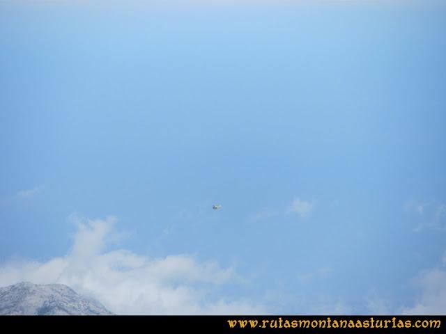 Ruta el Cable, Padiorna, Collado Jermoso, Palanca, Fuente De: Helicóptero de Bomberos rescatando en Torrecerredo