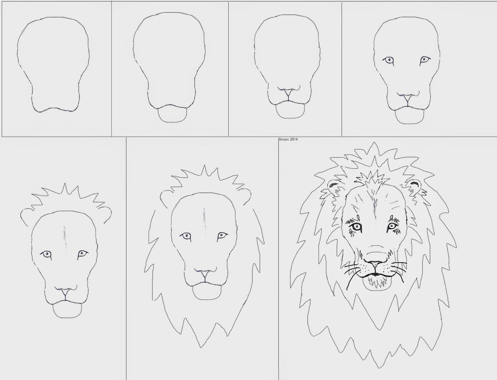 Here are some steps to draw a simplified lion