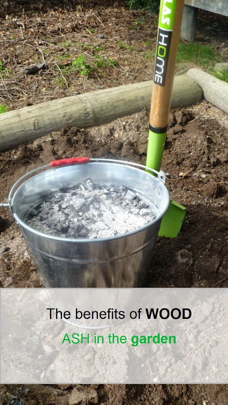 #Gardening : The benefits of WOOD ASH in the garden