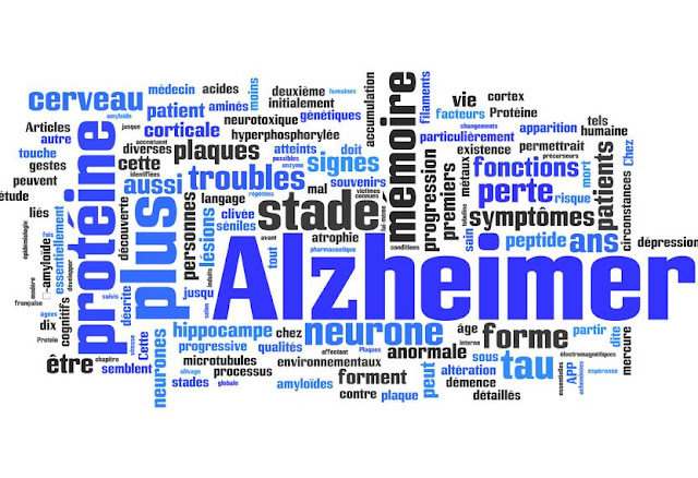 Cours PDF | La Maladie d'Alzheimer - Alzheimer's