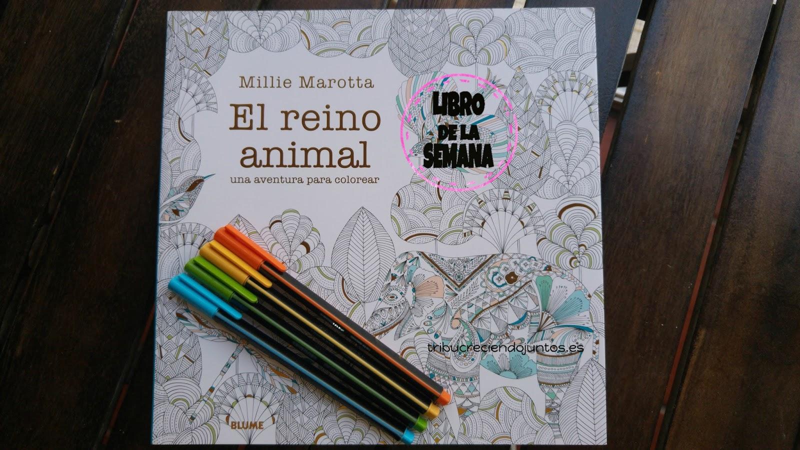 Encantador Nhl Para Colorear Adorno - Enmarcado Para Colorear ...