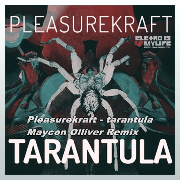 PleasureKraft - Tarantula (Maycon Olliver Remix)