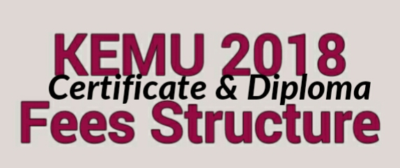Fees structure 2018  kemu