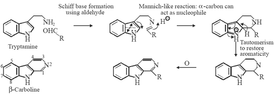 Mannich/Pictet-Spengler type reaction