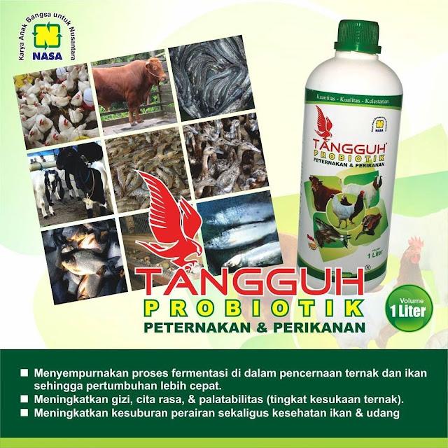 TANGGUH PROBIOTIK - Probiotik Paling Bagus dan Banyak Di Cari Di Indonesia