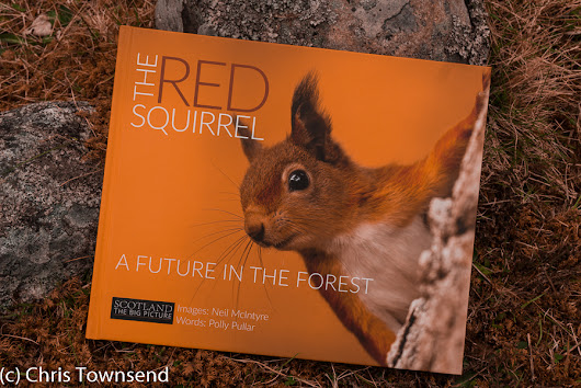 Book Review: The Red Squirrel: A Future In The Forest by Neil McIntyre & Polly Pullar