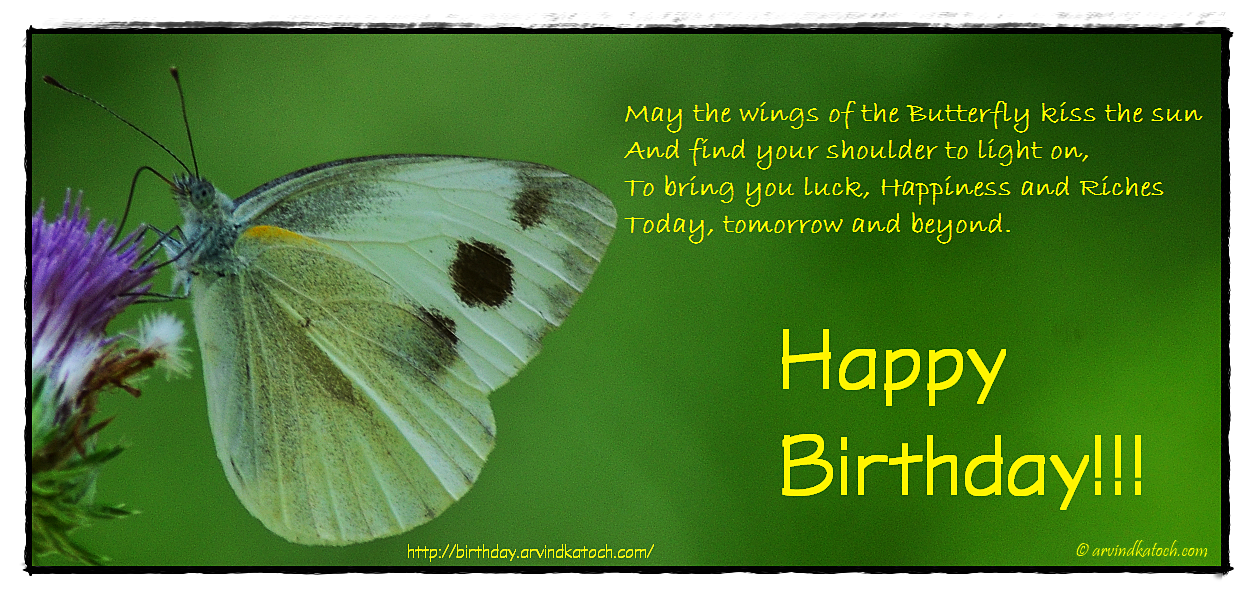 Birthday Card With Irish Blessing May The Wings Of The Butterfly